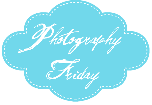 photography friday at fire and ice