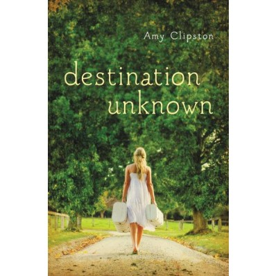 Review ~ Destination Unknown by Amy Clipston